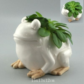 Cute Planter Pot